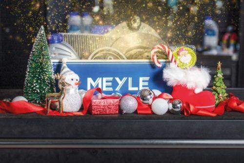 Расширение ассортимента в 2021 году запланировала MEYLE