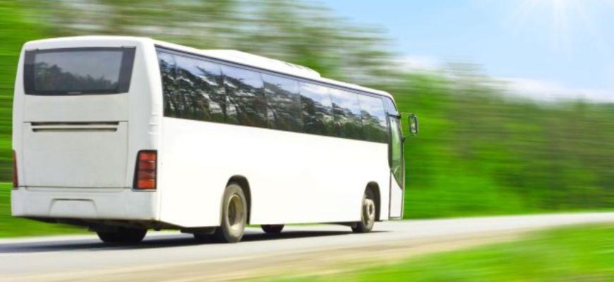 Транспортная реформа Соколова провоцирует отток перевозчиков